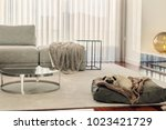 modern living room interior  | Shutterstock . vector #1023421729
