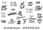 set of ink lettering phrases ... | Shutterstock .eps vector #1023433165