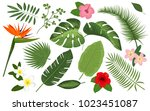 collection of exotic plants.... | Shutterstock .eps vector #1023451087