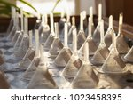 germination table system with...   Shutterstock . vector #1023458395