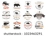 Stock vector wild animal badges set and great outdoors activity insignias retro illustrations typographic 1023463291