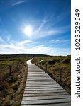 the way up hallasan... | Shutterstock . vector #1023529549
