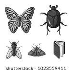 wrecker  parasite  nature ... | Shutterstock .eps vector #1023559411