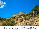 beautiful summer sea landscape...   Shutterstock . vector #1023561565