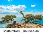 beautiful summer sea landscape...   Shutterstock . vector #1023565609