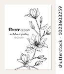 magnolia flower frame drawing ... | Shutterstock .eps vector #1023603259