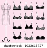 collection of different types... | Shutterstock .eps vector #1023615727