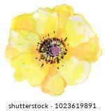 big yellow flower. watercolor... | Shutterstock . vector #1023619891