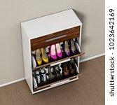 Contemporary Wooden Shoe...