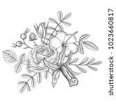 vintage vector floral... | Shutterstock .eps vector #1023660817