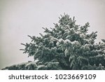 beautiful tree covered by snow... | Shutterstock . vector #1023669109