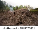 manufacturing charcoal  burn... | Shutterstock . vector #1023696811