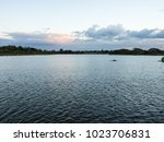 The Surface Of The Lake Is A...