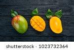 mango. tropical fruits. on a... | Shutterstock . vector #1023732364
