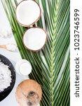 coconut milk in bottles and... | Shutterstock . vector #1023746599