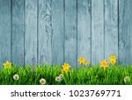 spring background with flowers  | Shutterstock . vector #1023769771