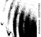abstract grunge grid stripe... | Shutterstock .eps vector #1023793381
