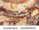 prefabricated raw semiprecious...   Shutterstock . vector #1023803641