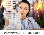 genetic research. calm clever... | Shutterstock . vector #1023838084