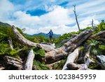 woman hiker moves through... | Shutterstock . vector #1023845959