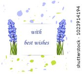flower blossom muscari.romantic ... | Shutterstock .eps vector #1023914194
