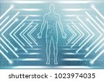 2d illustration human male... | Shutterstock . vector #1023974035