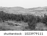 landscape of the upper galilee... | Shutterstock . vector #1023979111