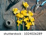 top view of florist's tool and... | Shutterstock . vector #1024026289
