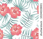 tropical flowers hibiscus and... | Shutterstock .eps vector #1024033831
