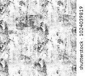 texture grunge monochrome.... | Shutterstock . vector #1024039819