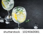 alcohol drink  gin tonic... | Shutterstock . vector #1024060081