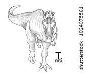 tyrannosaurus rex. vector... | Shutterstock .eps vector #1024075561