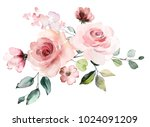 decorative watercolor flowers.... | Shutterstock . vector #1024091209
