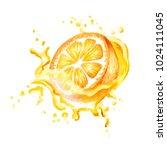 fresh orange in splash of juice ...   Shutterstock . vector #1024111045