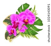 bouquet with tropical flowers... | Shutterstock .eps vector #1024143091