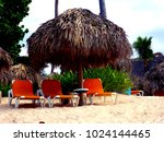 sun loungers and a beach... | Shutterstock . vector #1024144465