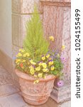 street flowerbed bowl with... | Shutterstock . vector #1024155499