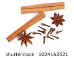 cinnamon sticks with star anise ... | Shutterstock . vector #1024163521