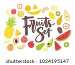 collection of delicious ripe... | Shutterstock .eps vector #1024195147