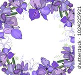 romantic frame with orchids.... | Shutterstock .eps vector #1024225921