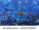 dubai  uae   september 7  2015  ... | Shutterstock . vector #1024225969