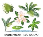 vector set of tropical leaves   Shutterstock .eps vector #102423097