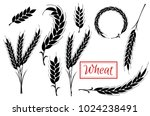 set wheat ears black icons and... | Shutterstock .eps vector #1024238491