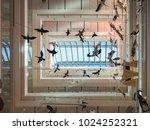 trento  italy   november 19 ... | Shutterstock . vector #1024252321