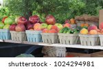 fruits and vegetables at a... | Shutterstock . vector #1024294981
