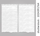 wrinkled ripped lined page or... | Shutterstock .eps vector #1024391764