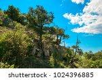 beautiful summer sea landscape...   Shutterstock . vector #1024396885