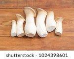 several fresh cultivated eringi ... | Shutterstock . vector #1024398601