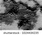 black and white grunge dust...   Shutterstock .eps vector #1024434235
