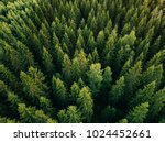 aerial top view of summer green ... | Shutterstock . vector #1024452661